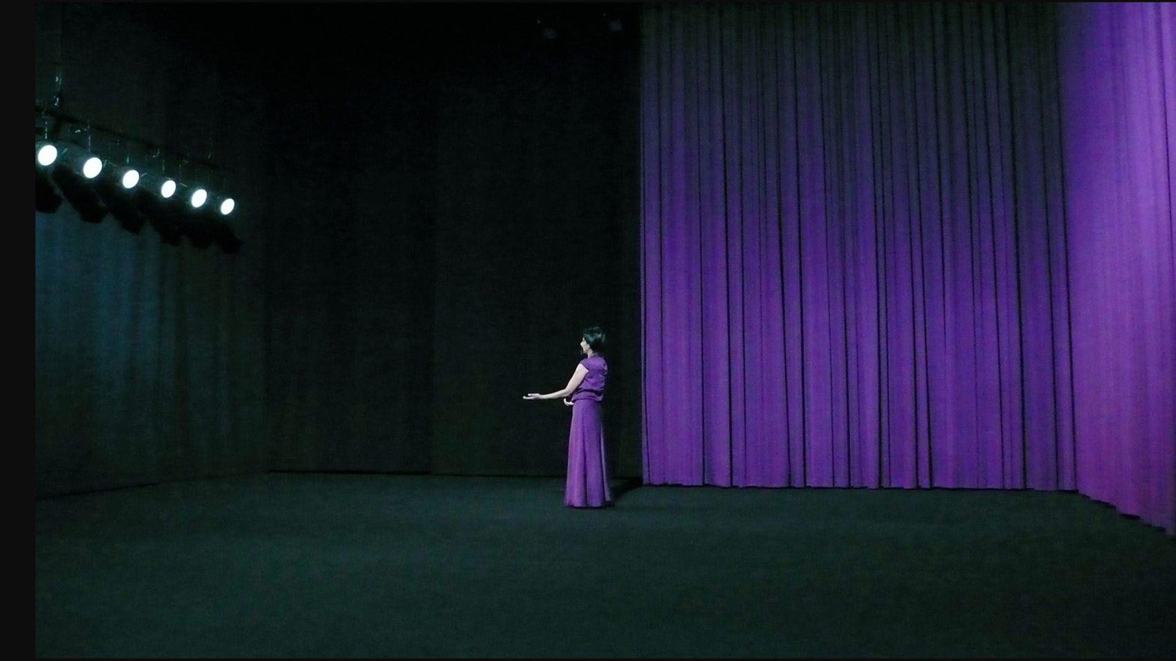 Nadia Lauro – Dancing Curtain - Dancing Curtain 2013